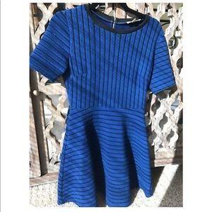 Alythea Blue Black Stripe Fit and Flare Dress M